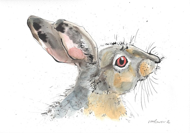 Hare - Alert #01, watercolour and ink - Image 0