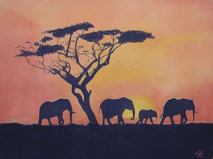 African Safari -