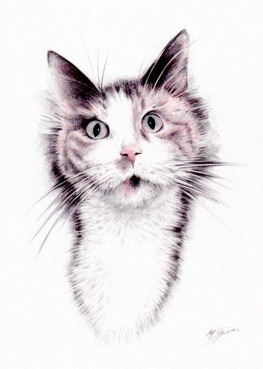 Cat , study - Image 0
