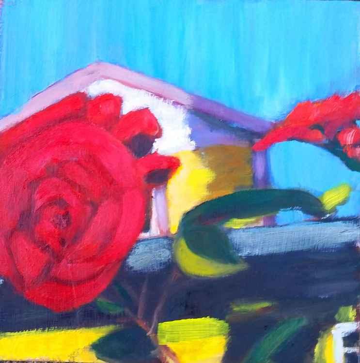 Rose of Portland