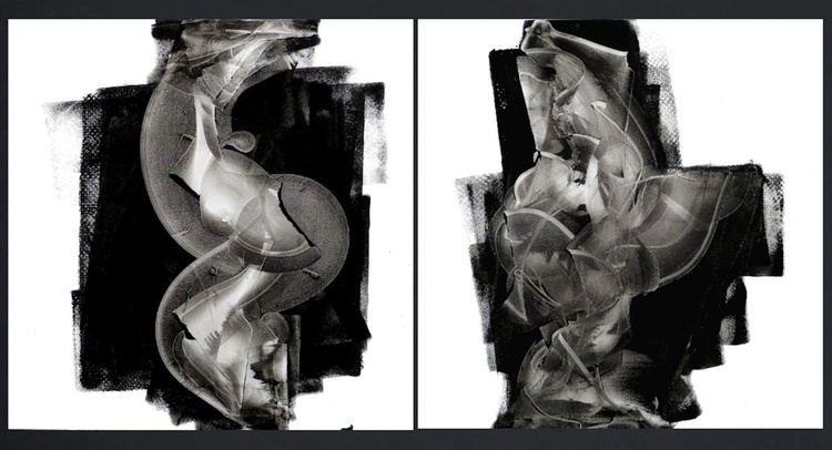 Double Take Diptych - Image 0