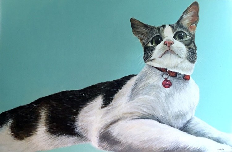 xiaomi the cat #15 - Image 0