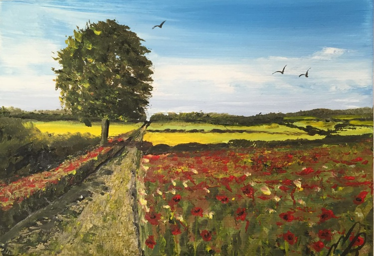 Path through the poppy field. - Image 0