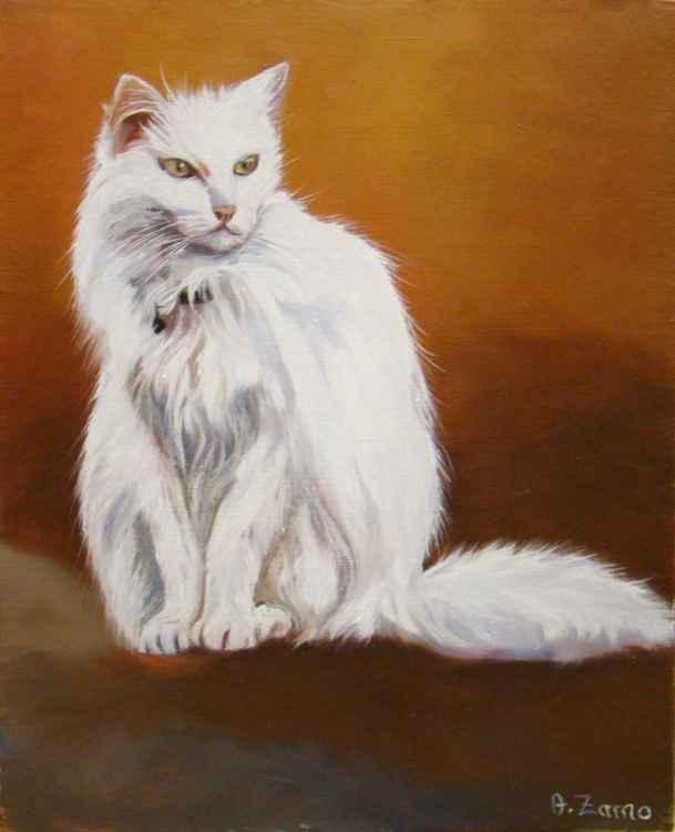 Mimi Portrait of a white cat