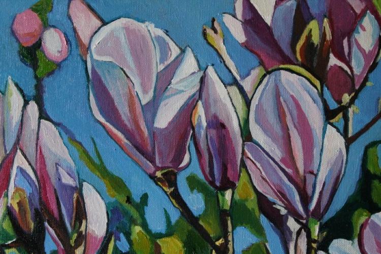 Magnolias - Image 0