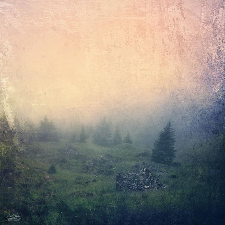 Calmness of the landscape - Image 0