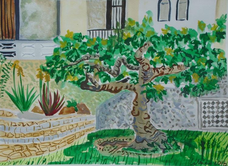 Fig Tree in  Spanish Garden - Image 0