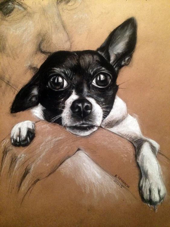 My Little Chihuahua Portrait - Image 0