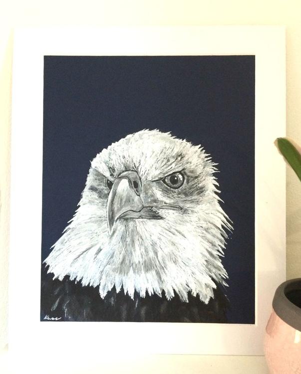 Bald Eagle - Image 0