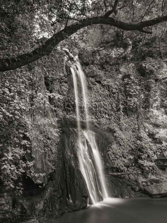 Waterfall #3 -