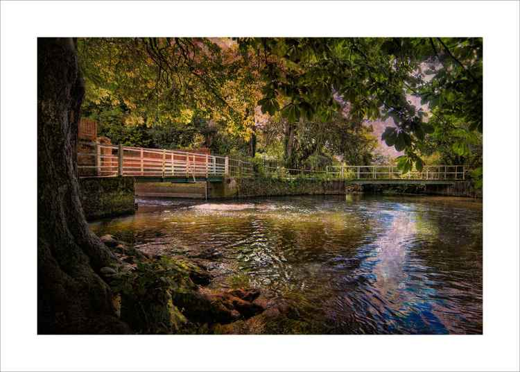 The mill pond -