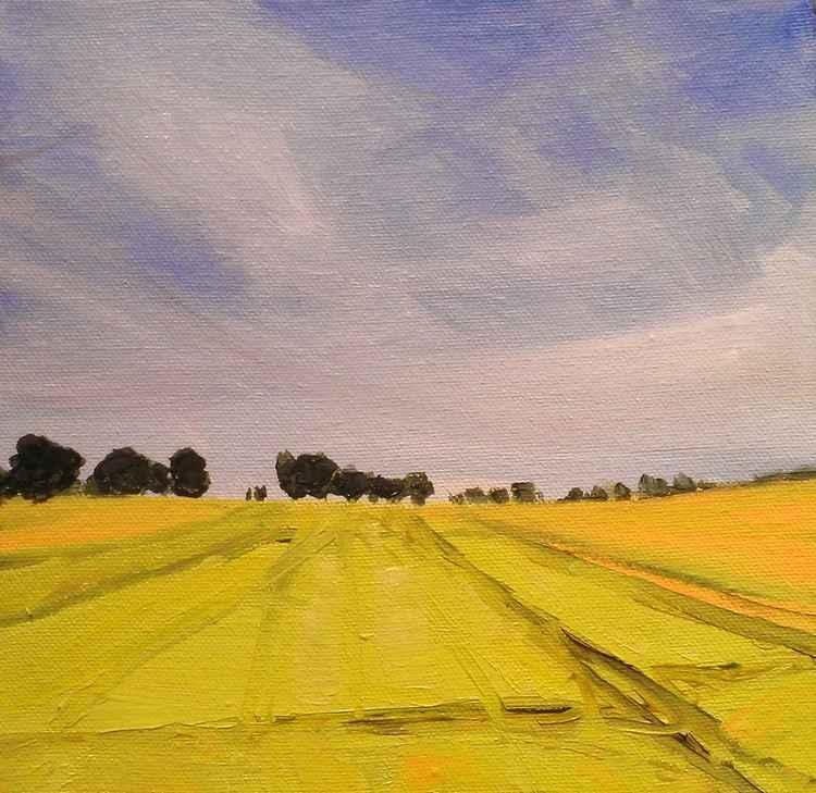Summer Fields No.1