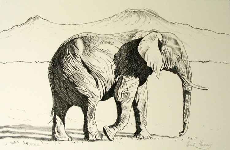 African Elephant, Mount Kilimanjaro -