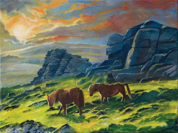 Dartmoor ponies caught in the light