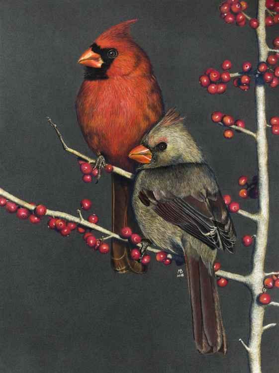 "Original pastel drawing ""Northern cardinals on Possum Haw Holly"""