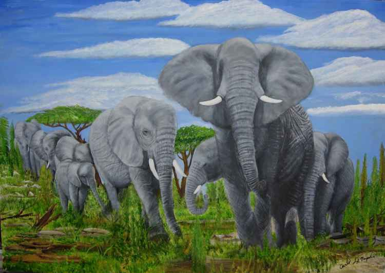Elephant Gathering -