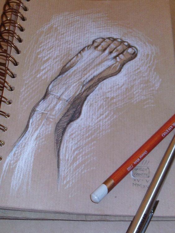 Foot Study 4 - Image 0