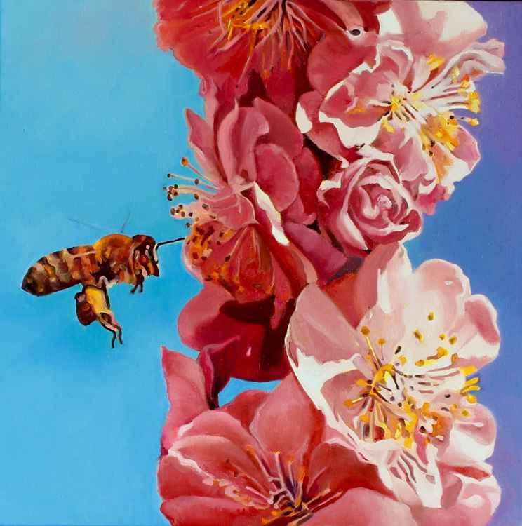 Bee Maja