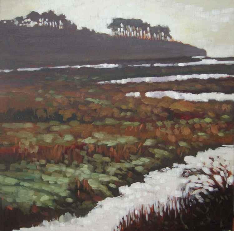 Otter Head, Budliegh Salterton -