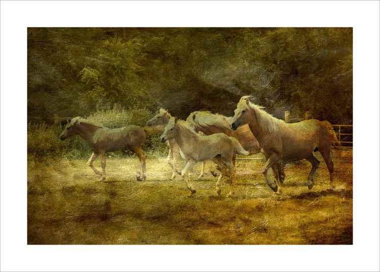 Running Horses -