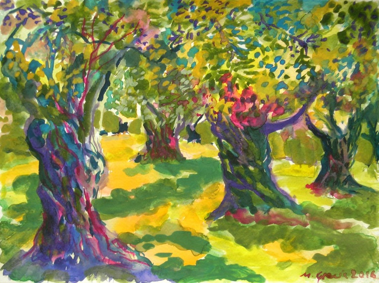 In the shade of olive trees - Image 0