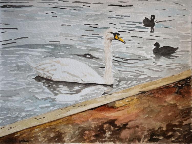 The Queen's Swan - Image 0