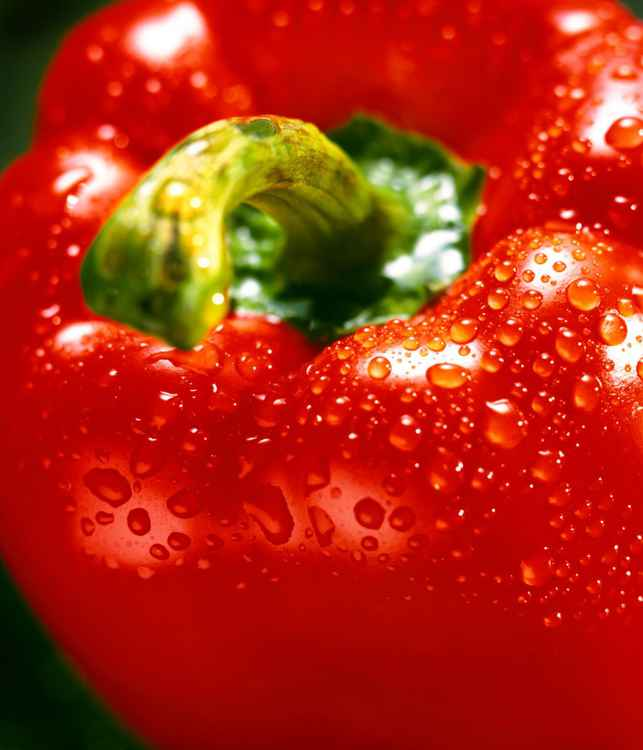 Red Pepper -