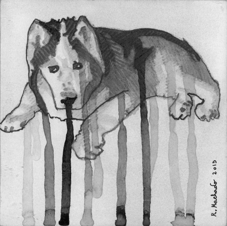 Black Husky - Image 0