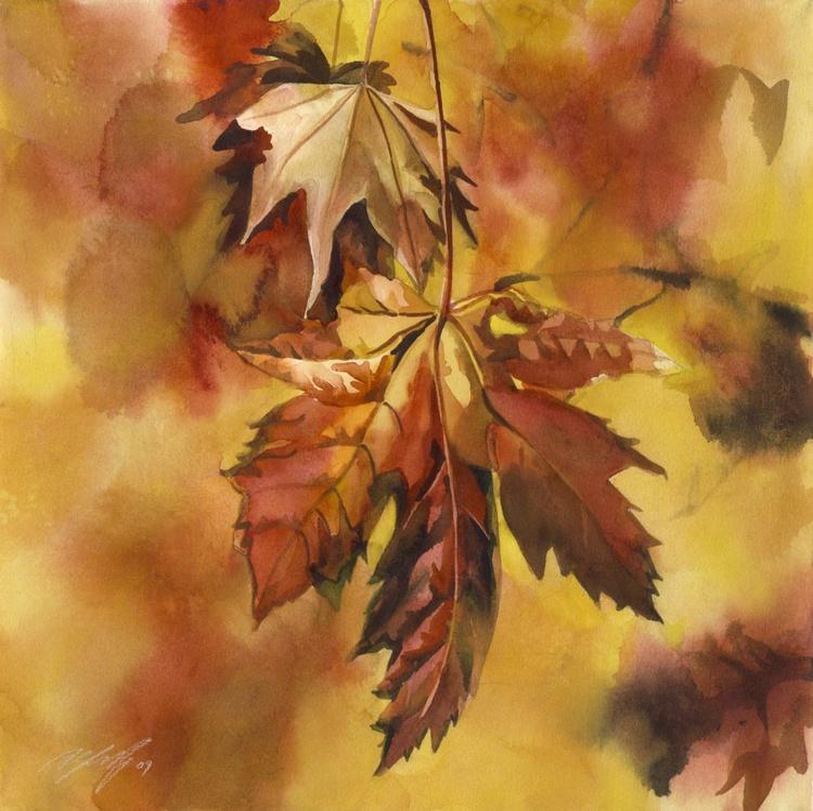 Autumn maple - Image 0