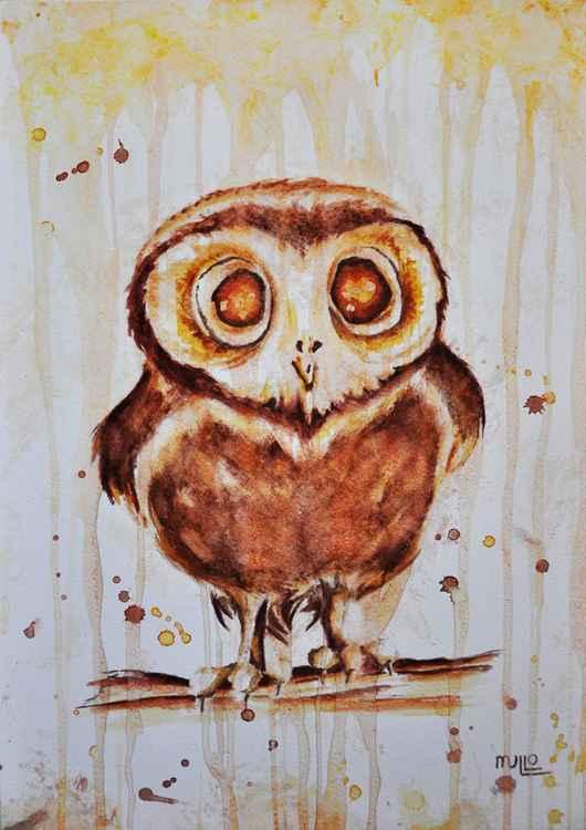 Owl Study 01 -