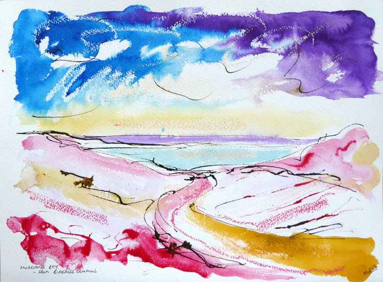 'Morecambe Bay from Birkrigg Common'