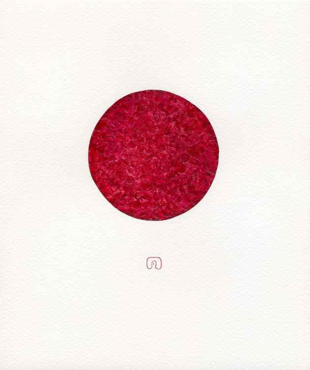 THE CIRCLE D88 N°05