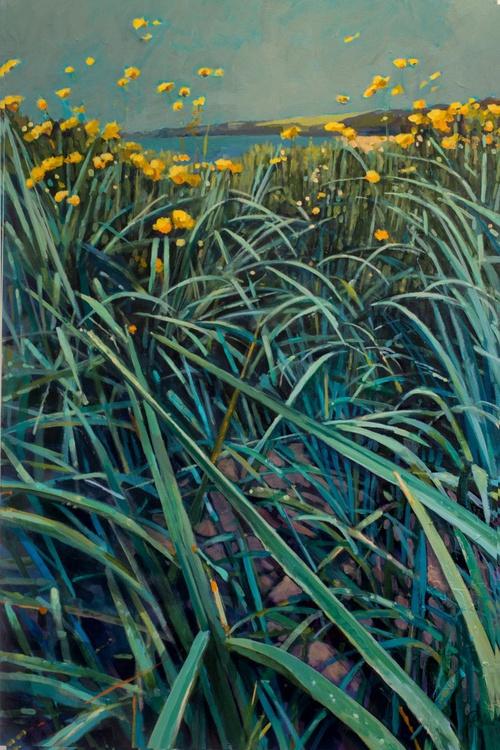 Poppit Beach Grasses - Image 0
