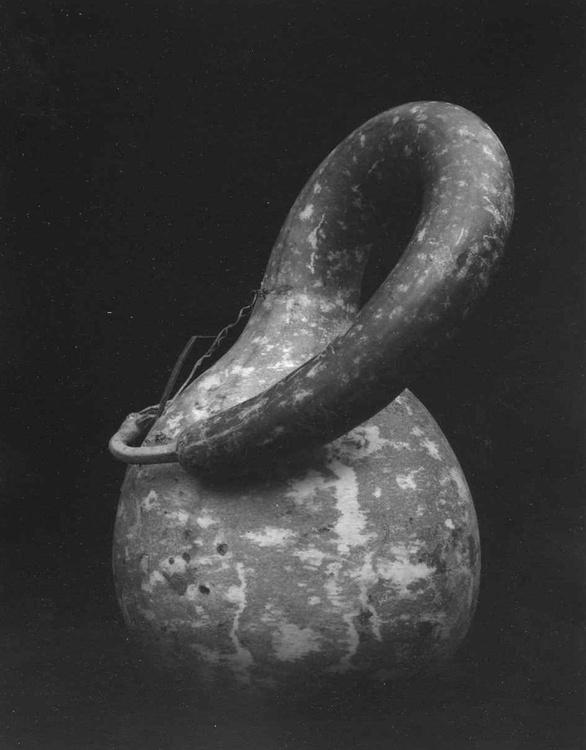 Gourd Still Life - Image 0