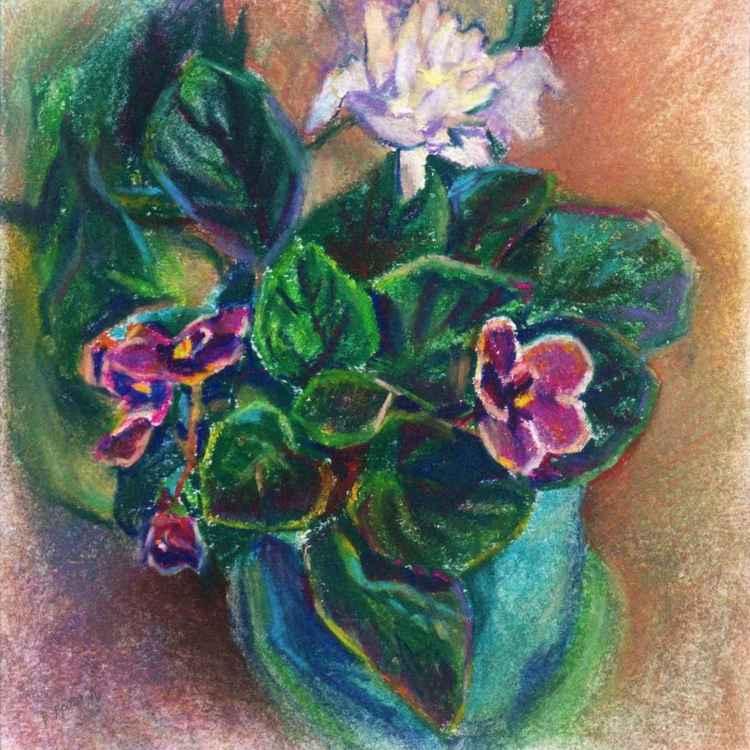Violet and Chrysanthemum
