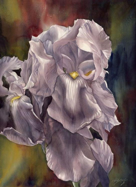 irises with blues - Image 0