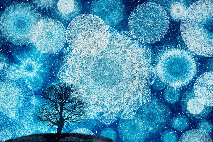 Winter Night's Dream (Ltd Edition of only 20 Fine Art Giclee Prints from original artwork.) - Image 0