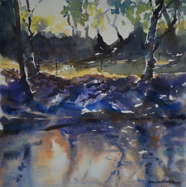 Sunlit Reflections - Image 0