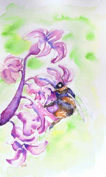 Bee on a Hyacinth -