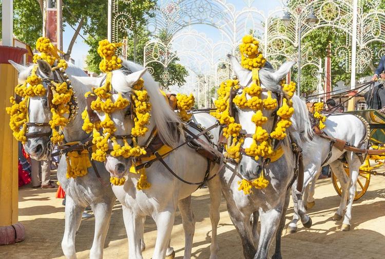 Jerez Horse Festival 2 - Image 0