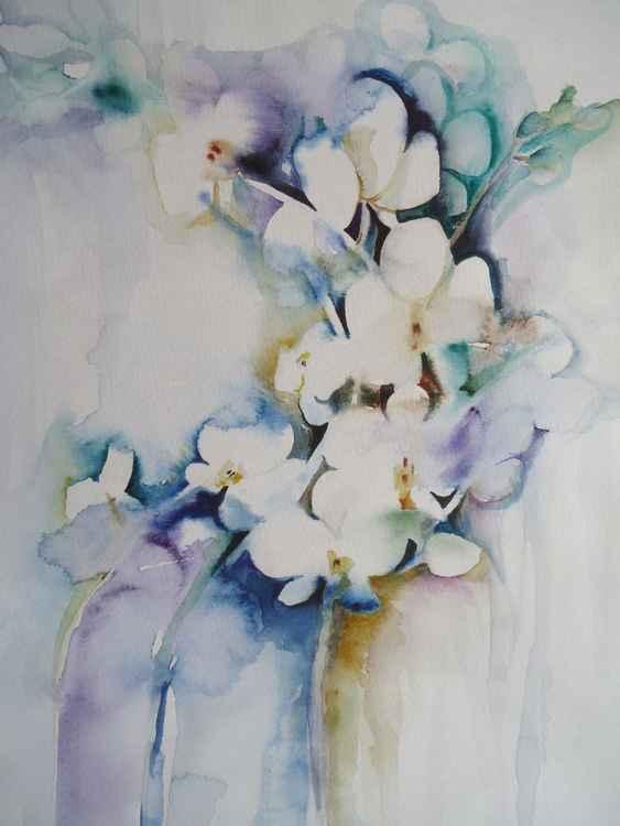 Orchids 1 -