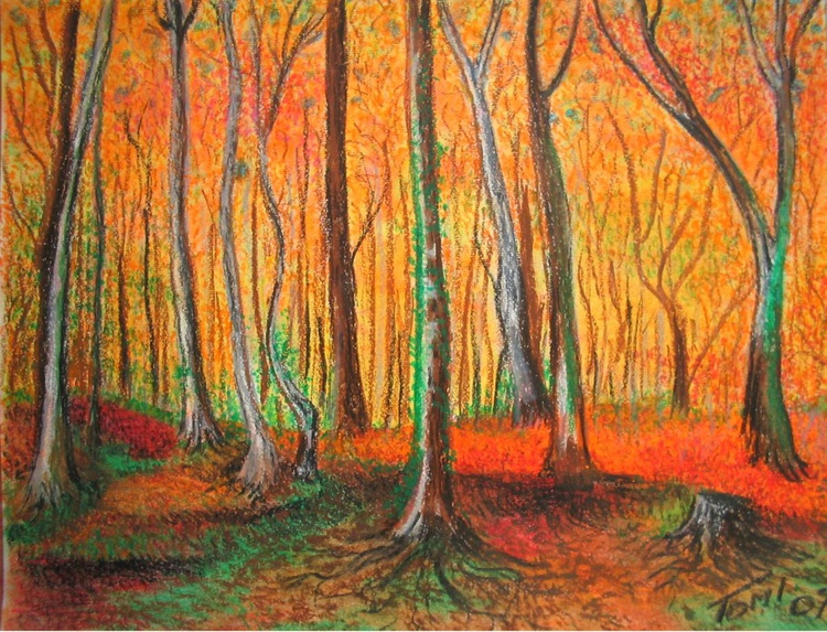 birch_forest_autumn - Image 0