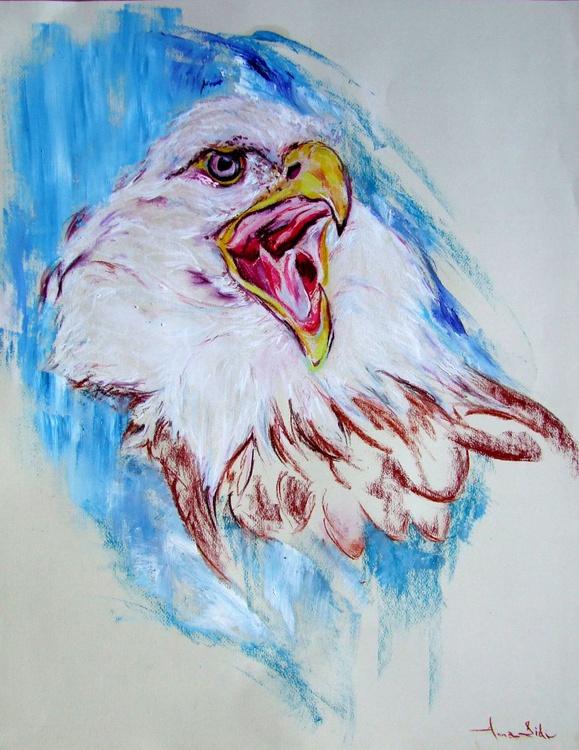 Eagle's Eye - Image 0