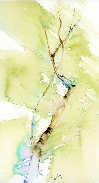 Asian Tree -