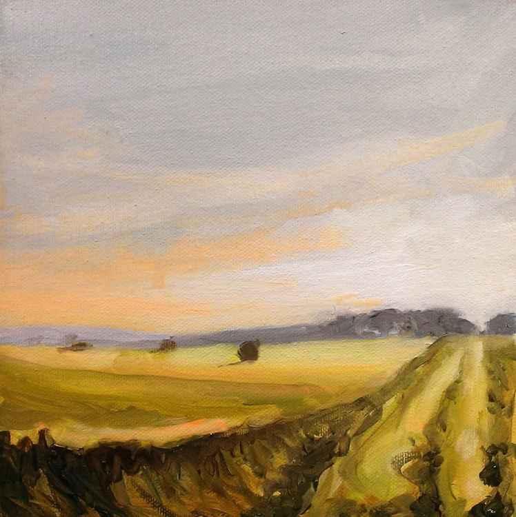 Summer Fields No.2 -