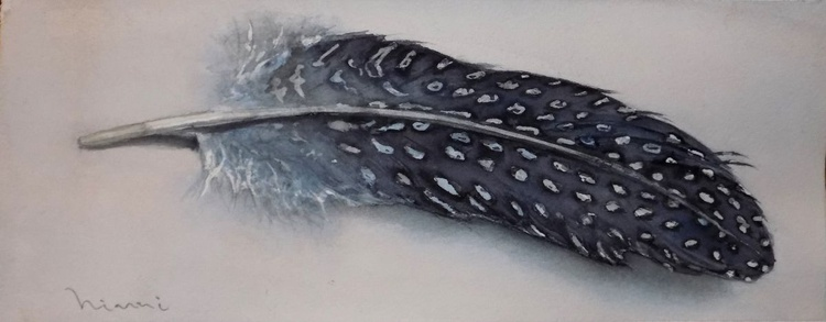 A Feather - Image 0