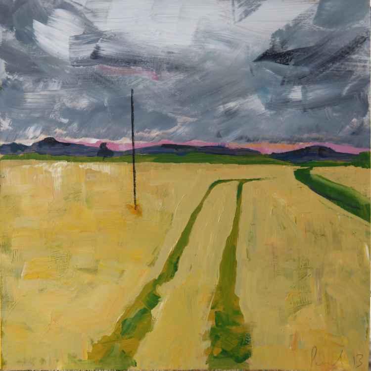 Field, Nothumberland