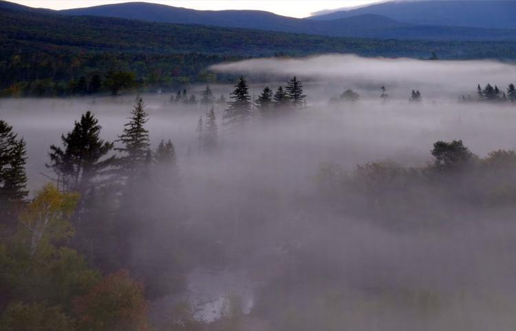 Morning Fog 8 - Image 0