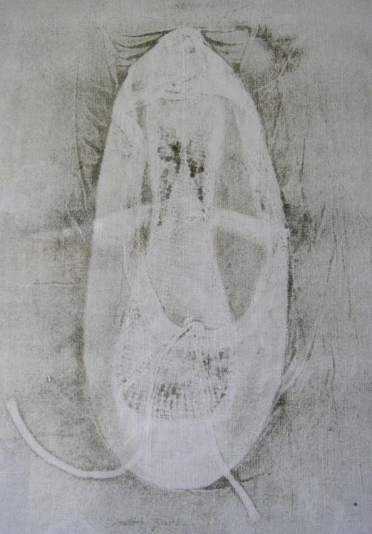 Ballet Pump - Image 0