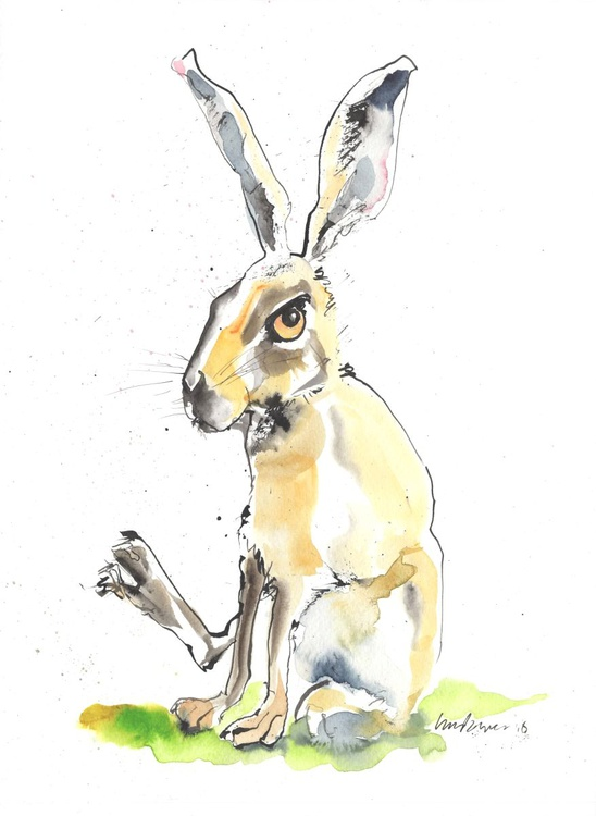 Hare - Compromised - Image 0
